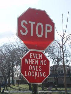 Green card stop işareti ehliyet